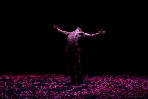 Балет Монте-Карло приедет на фестиваль «Дягилев. P.S.». Почему это важно?