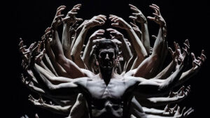 Read more about the article Непродолжительная красота на вашем экране: балеты от 6 до 40 минут