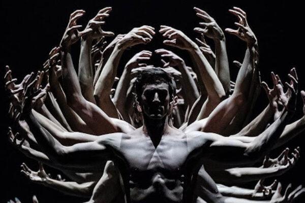 Непродолжительная красота на вашем экране: балеты от 6 до 40 минут